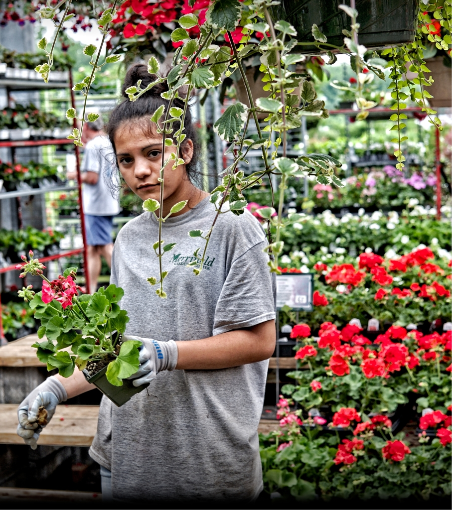 working for the plants copy30