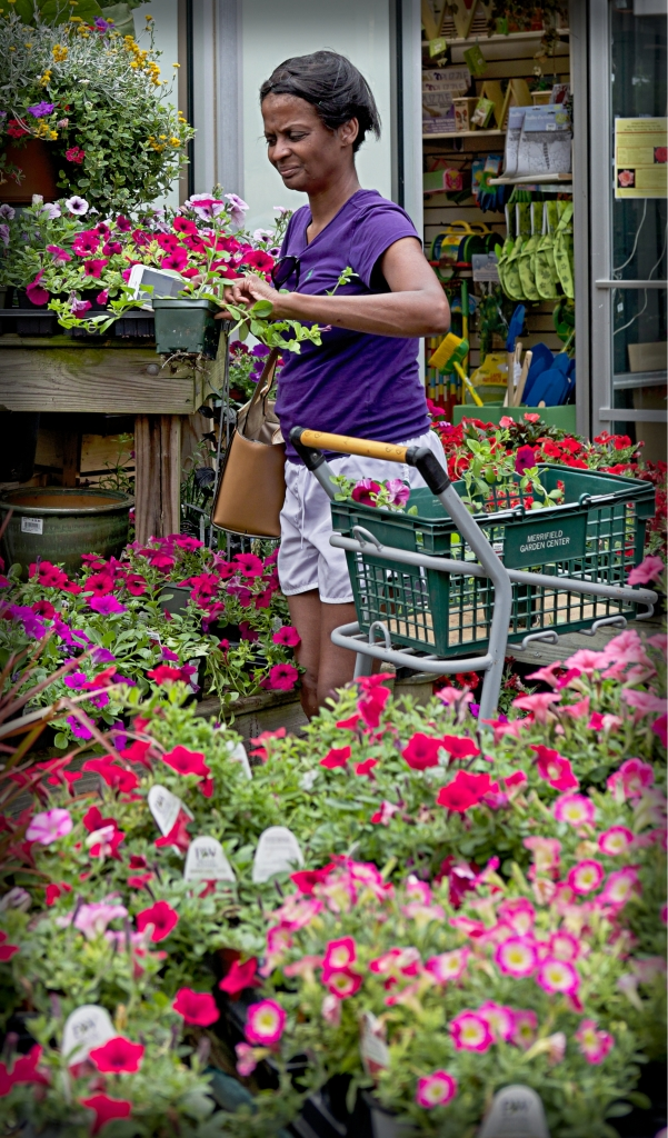 working for the plants copy31